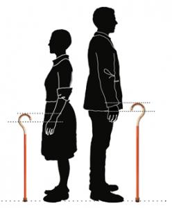 wandelstok-juiste-hoogte