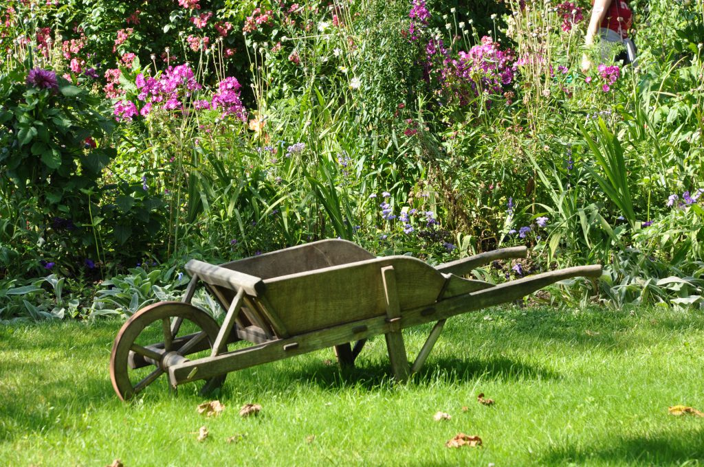 tuinieren ouderen