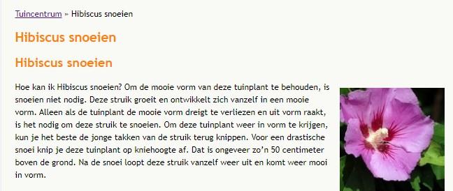 tuinplanten online bestellen