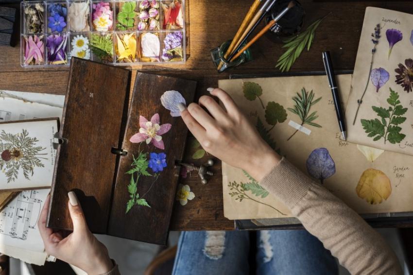 droogbloemen pers